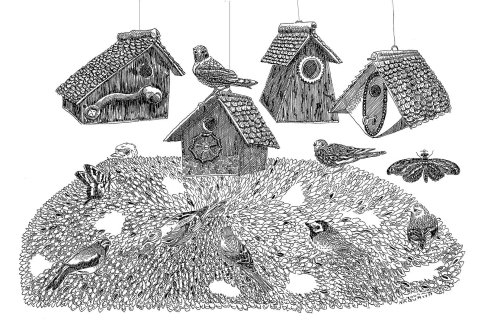 Birdhouses-WEB