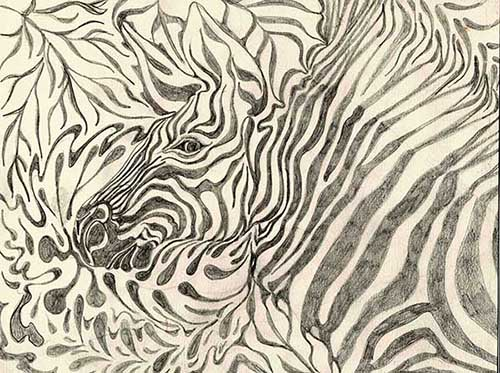 zebra-graphite-web