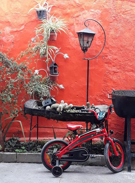 red bike still life